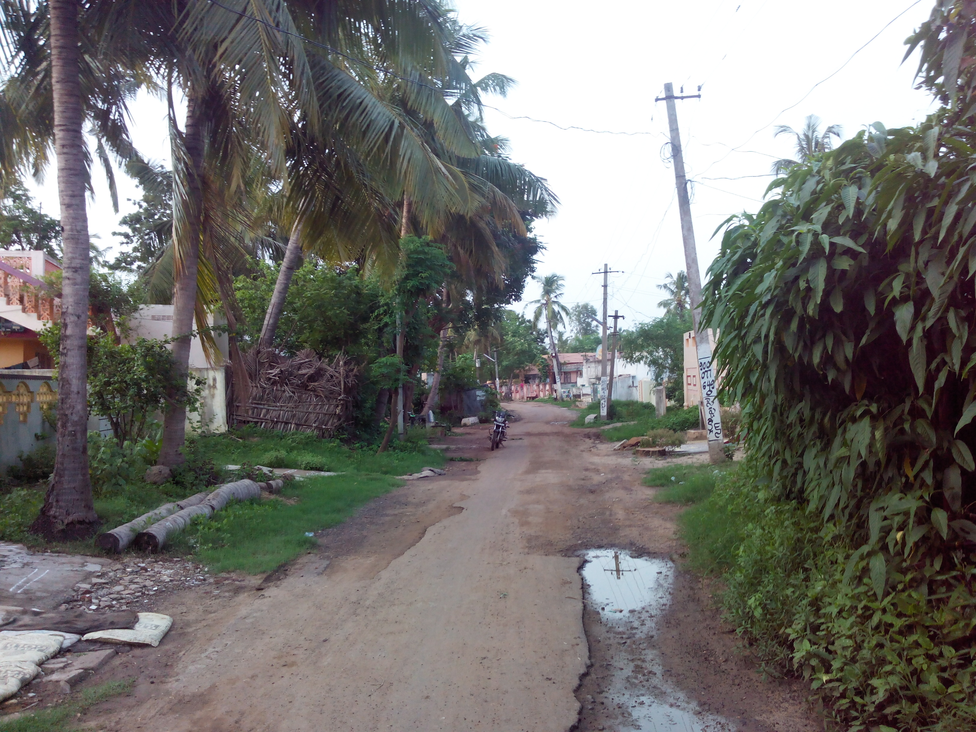 Putlacheruvu Towards Bendi Vari Veedi