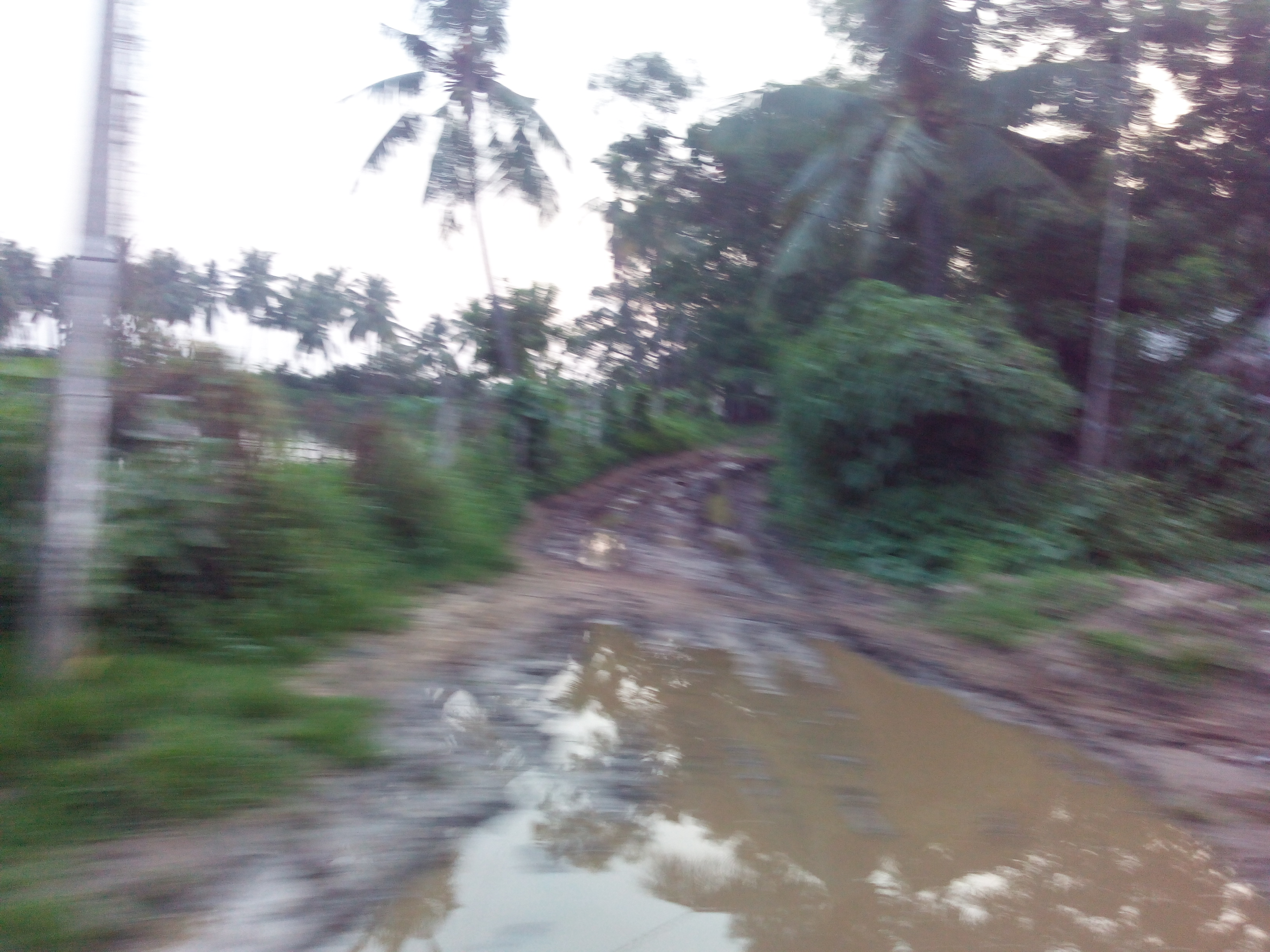 Putlacheruvu Main Road Near Ramalayam Temple
