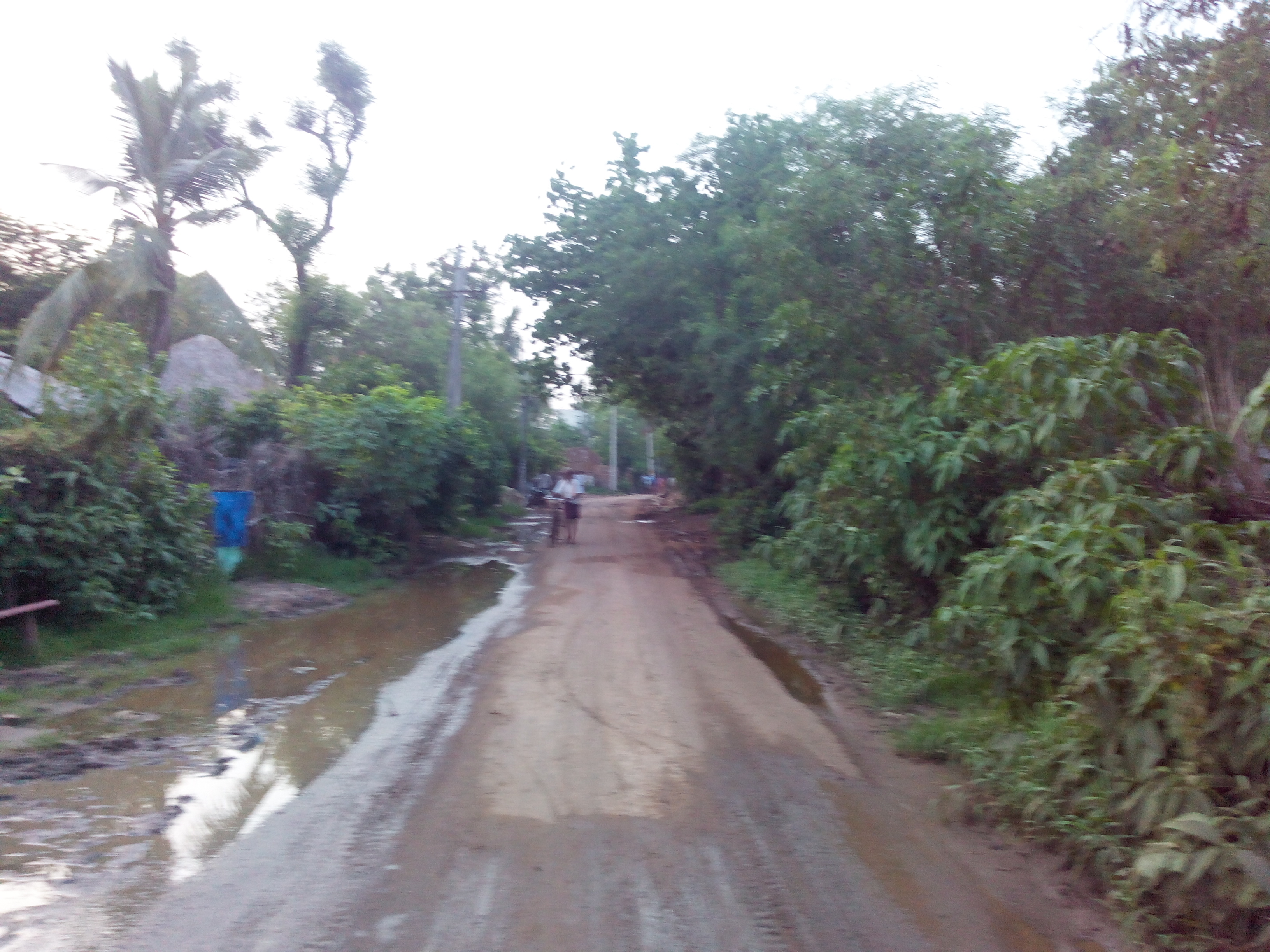 Putlacheruvu Main Road towards Gollagudem