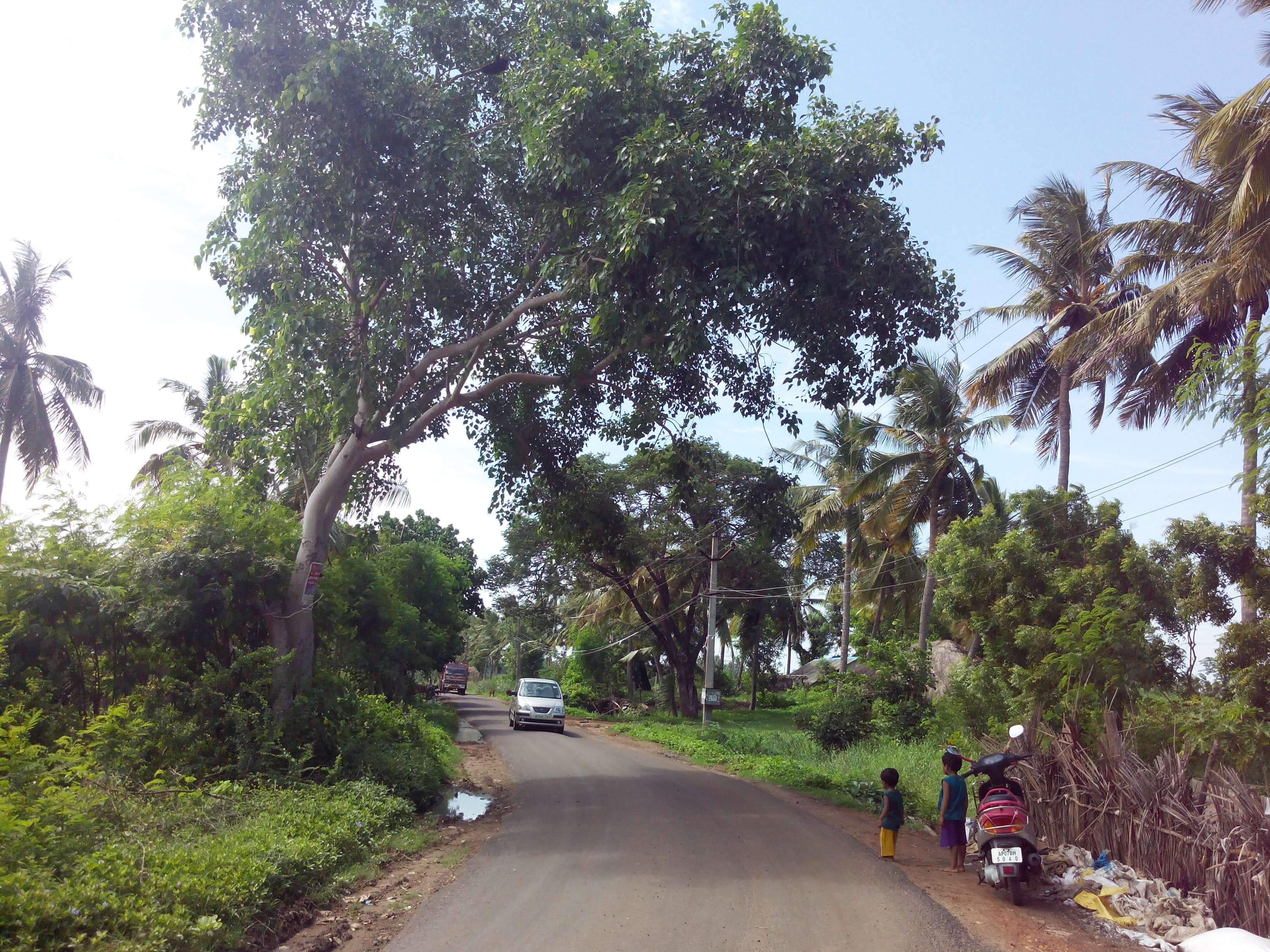 Putlacheruvu Main Road Near Sai Baba Temple
